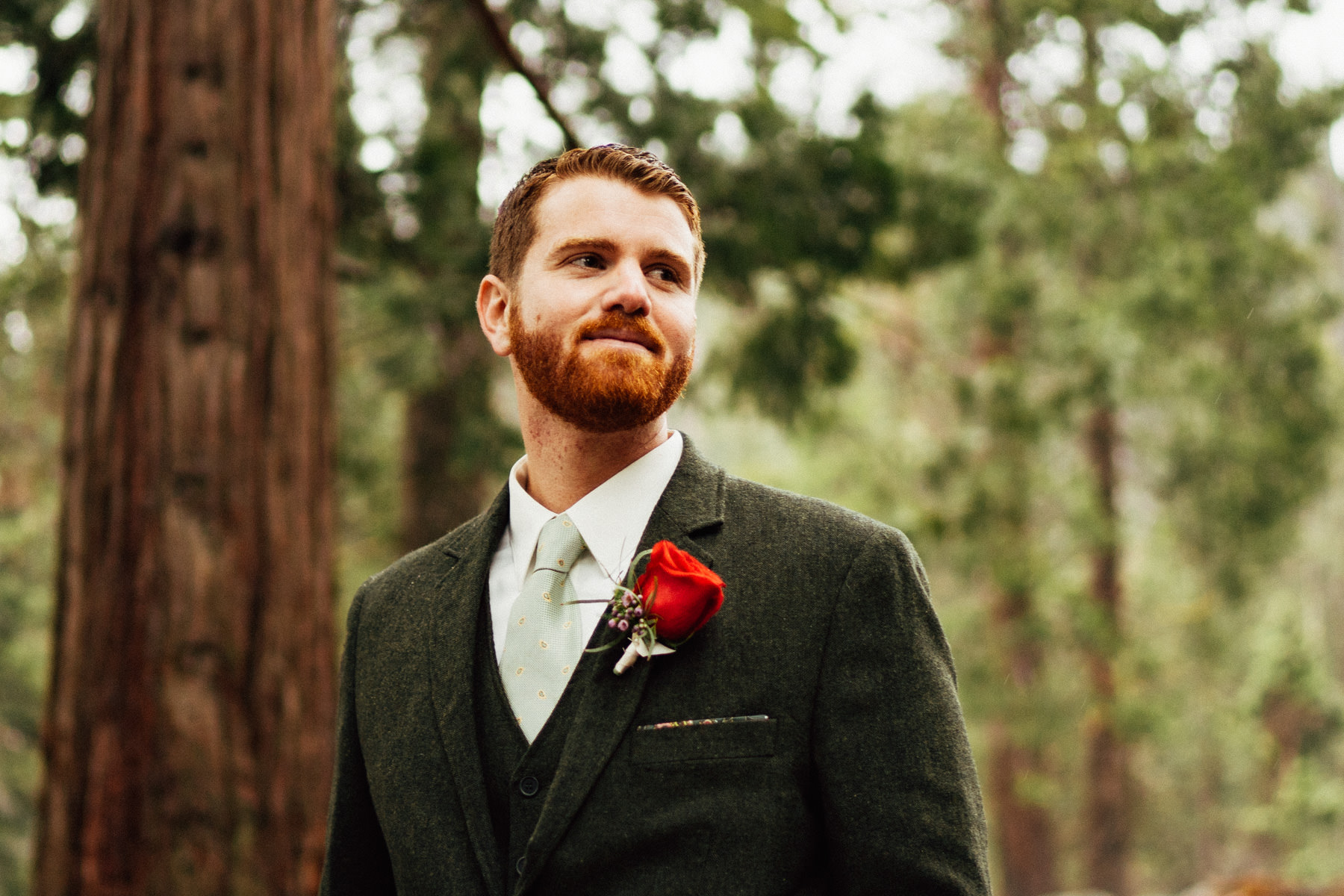 sequoia national park elopement-115.jpg