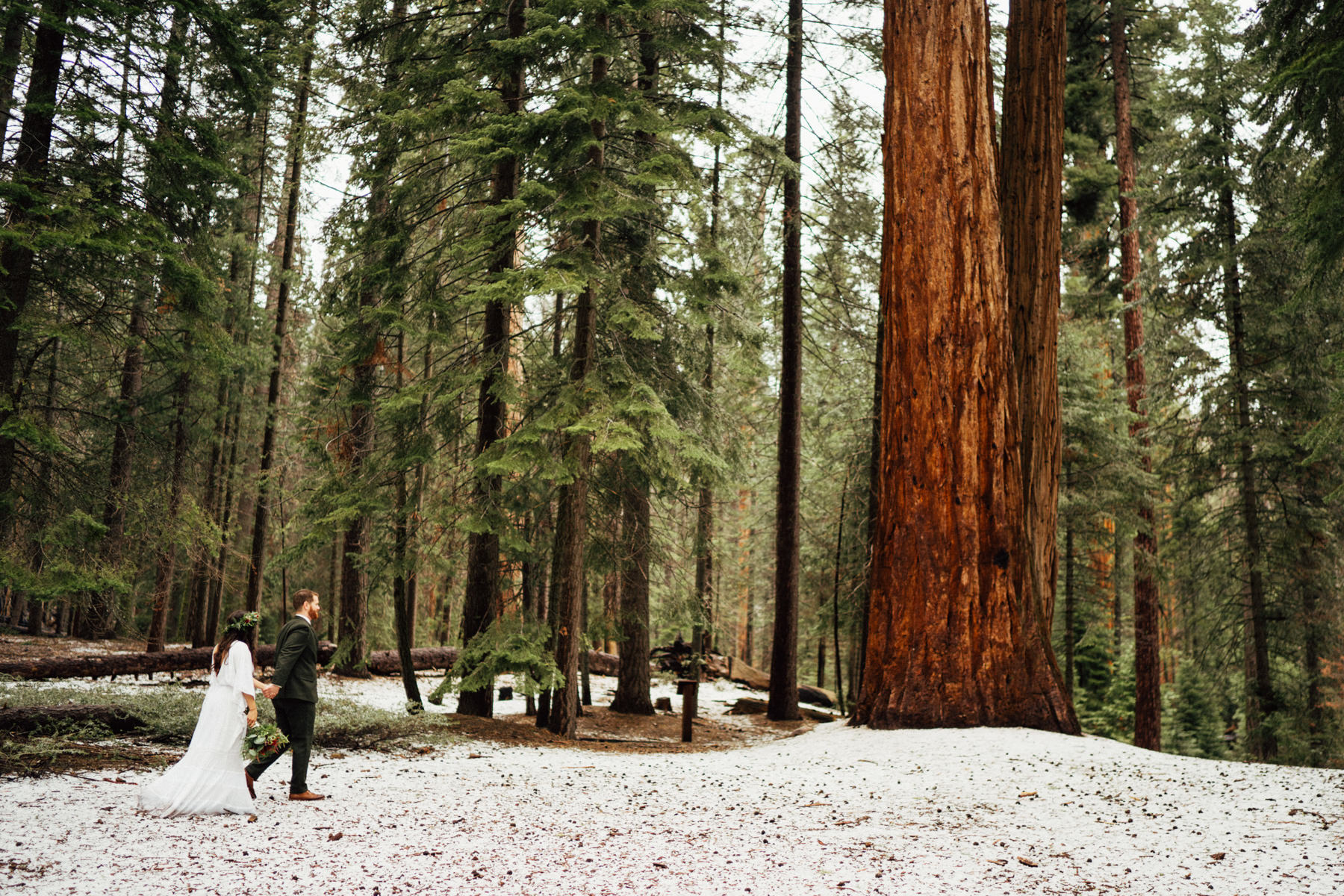sequoia national park elopement-296.jpg