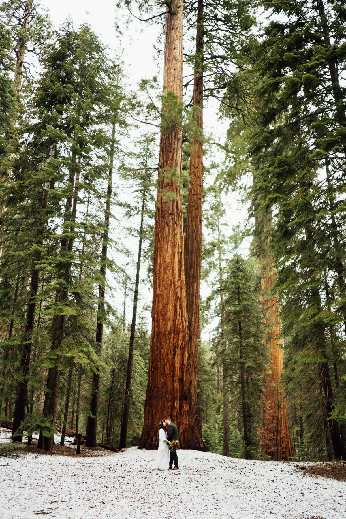 sequoia national park elopement-297.jpg