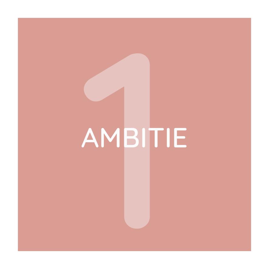 ambitie.png