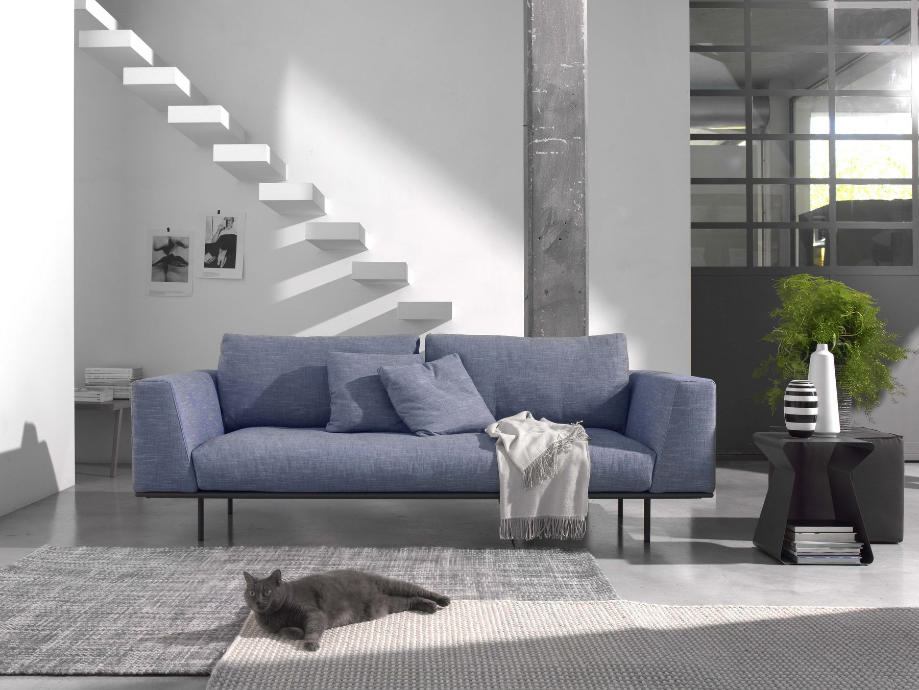 divani moderni modena