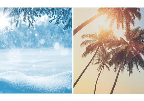 Summer-winter.jpg