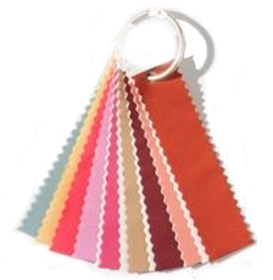 Color Scheme -