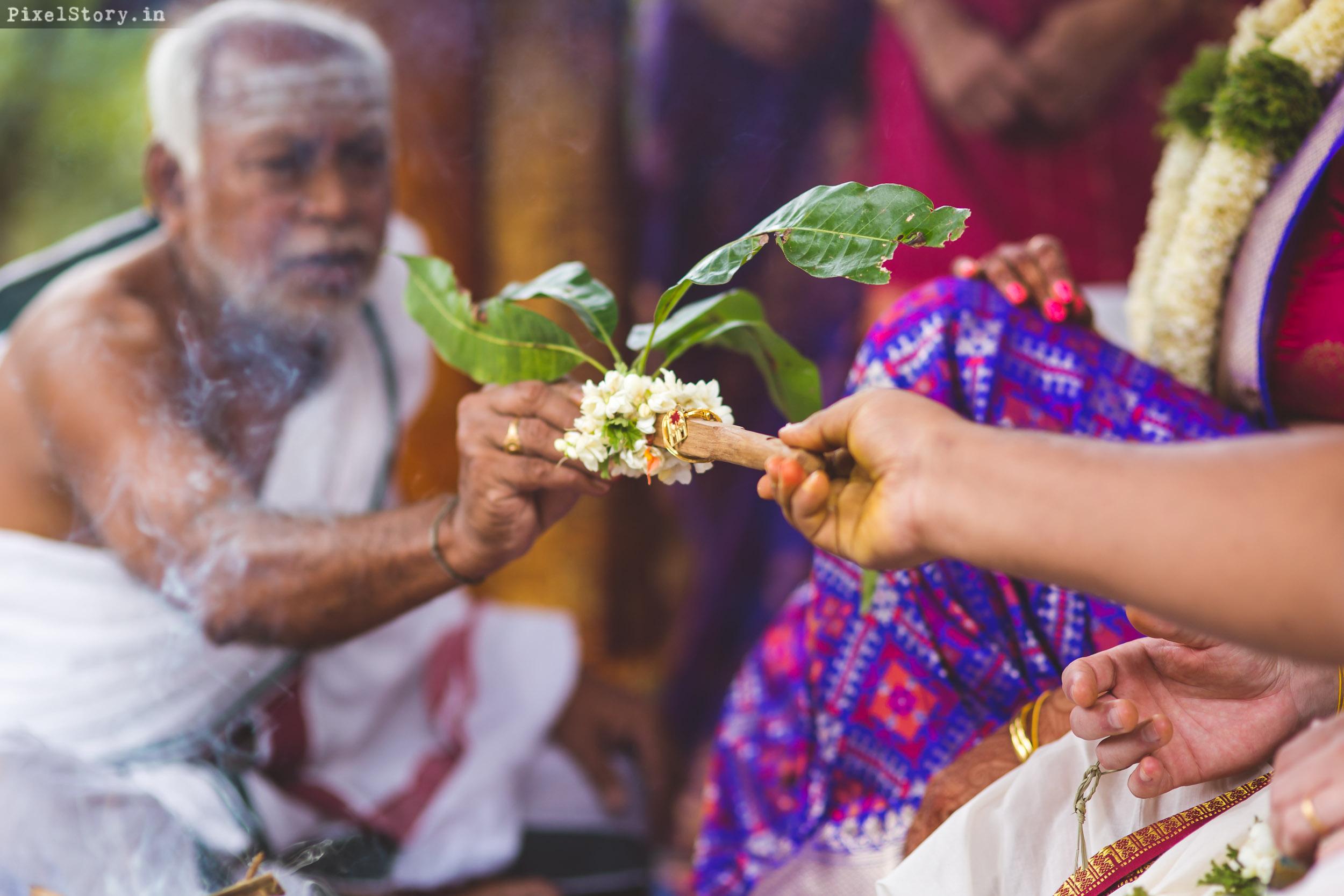 PixelStory-Jungle-Wedding-Photographer-Masinagudi-Indo-French061.jpg