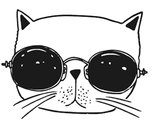 coding club head main cat head.png