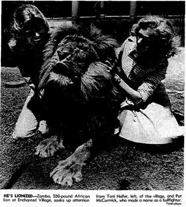 toni helfer petting lion.PNG