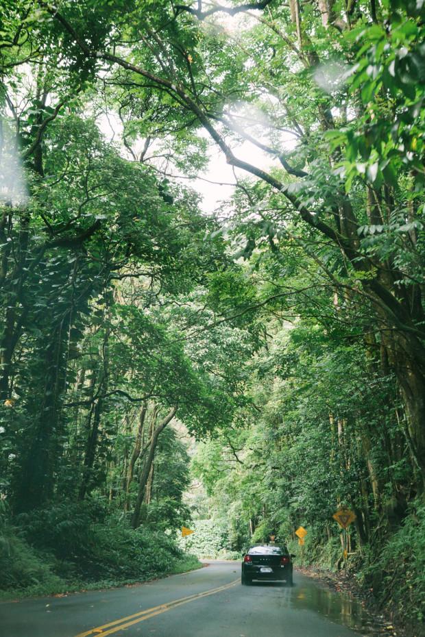 CCRK Shortcut Travels Road to Hana-10