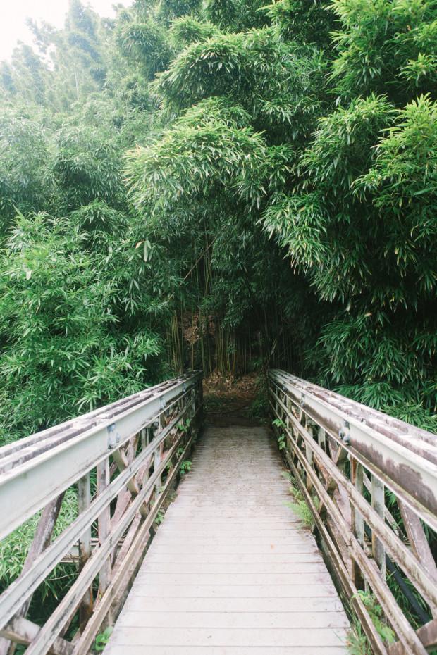 CCRK Shortcut Travels Road to Hana-34