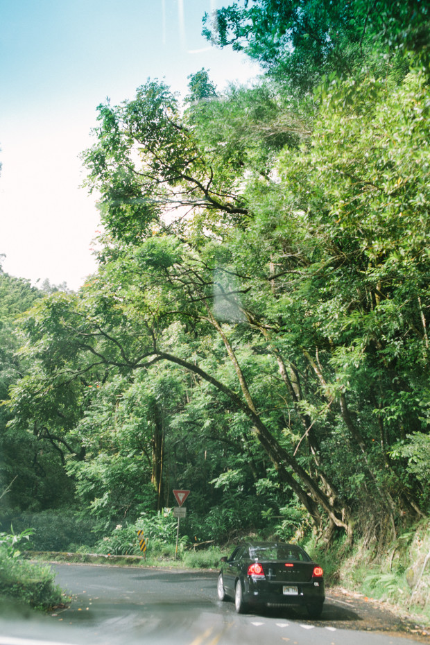 CCRK Shortcut Travels Road to Hana-5