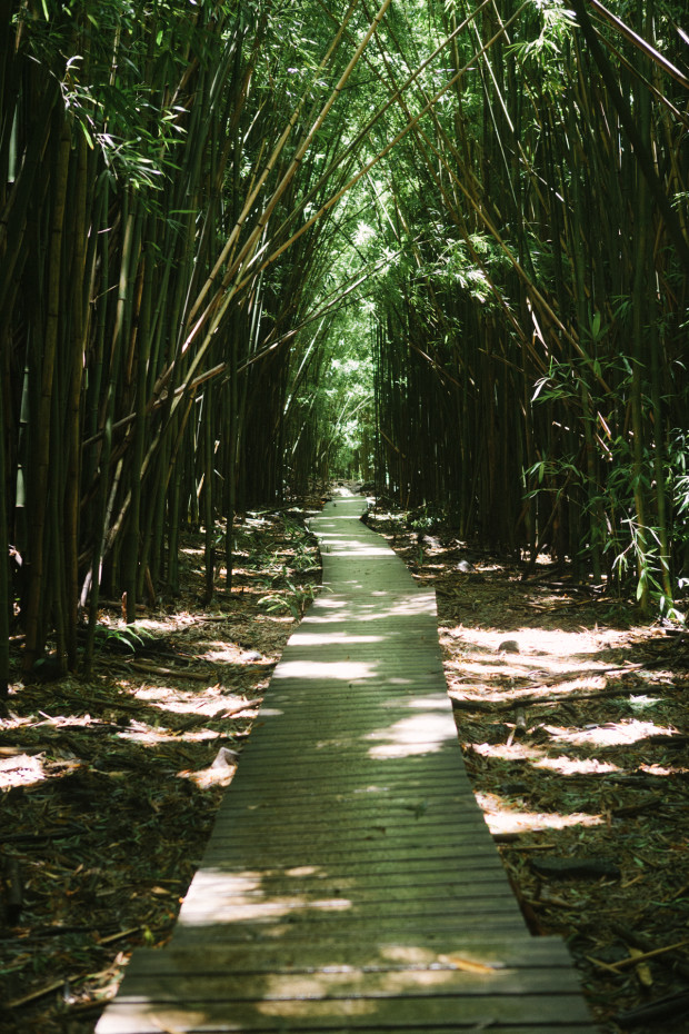 CCRK Shortcut Travels Road to Hana-57