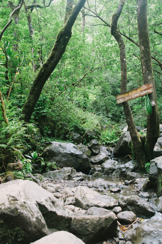 CCRK Shortcut Travels Road to Hana-66