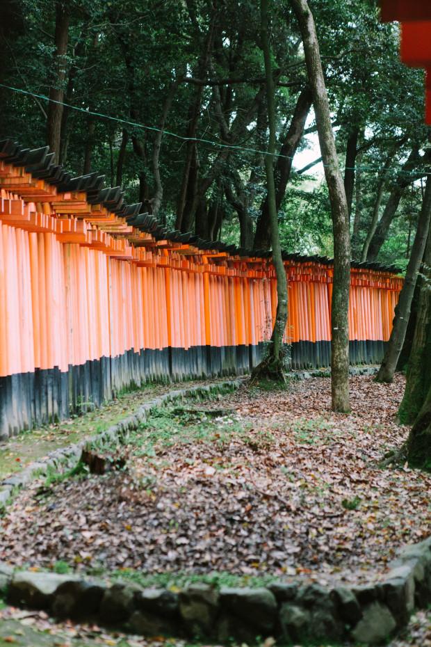 2015 Kyoto Nara-124
