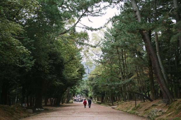 2015 Kyoto Nara-142