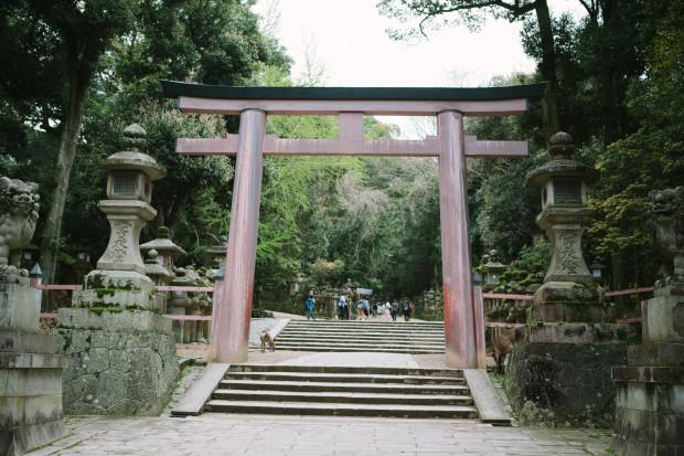 2015 Kyoto Nara-153