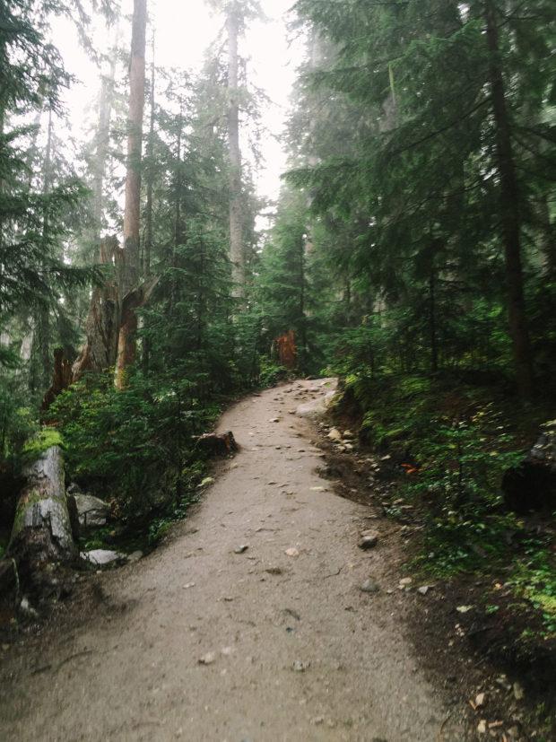 Shortcut Travels - Joffre Lakes 2016-15