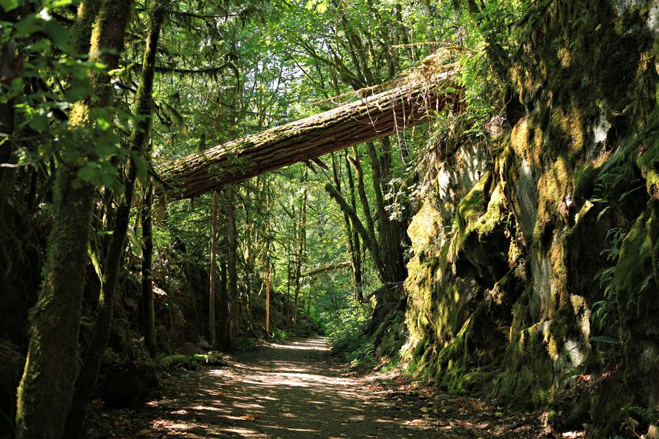 4 Camping Trip 2012 Hope Coquihalla Campground