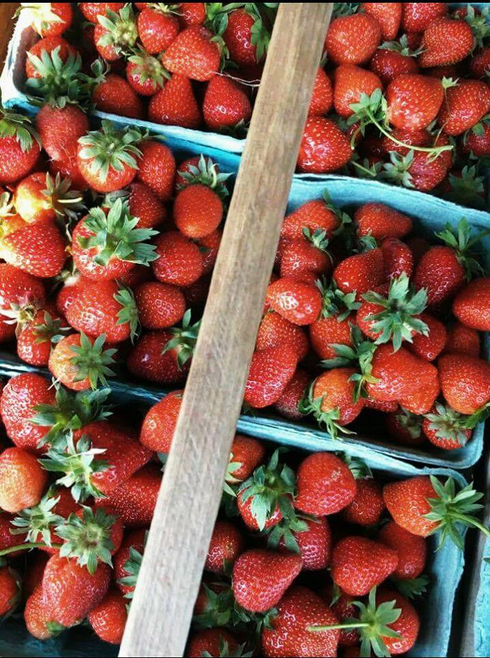 strawberries local farms for In A Jam fruit source