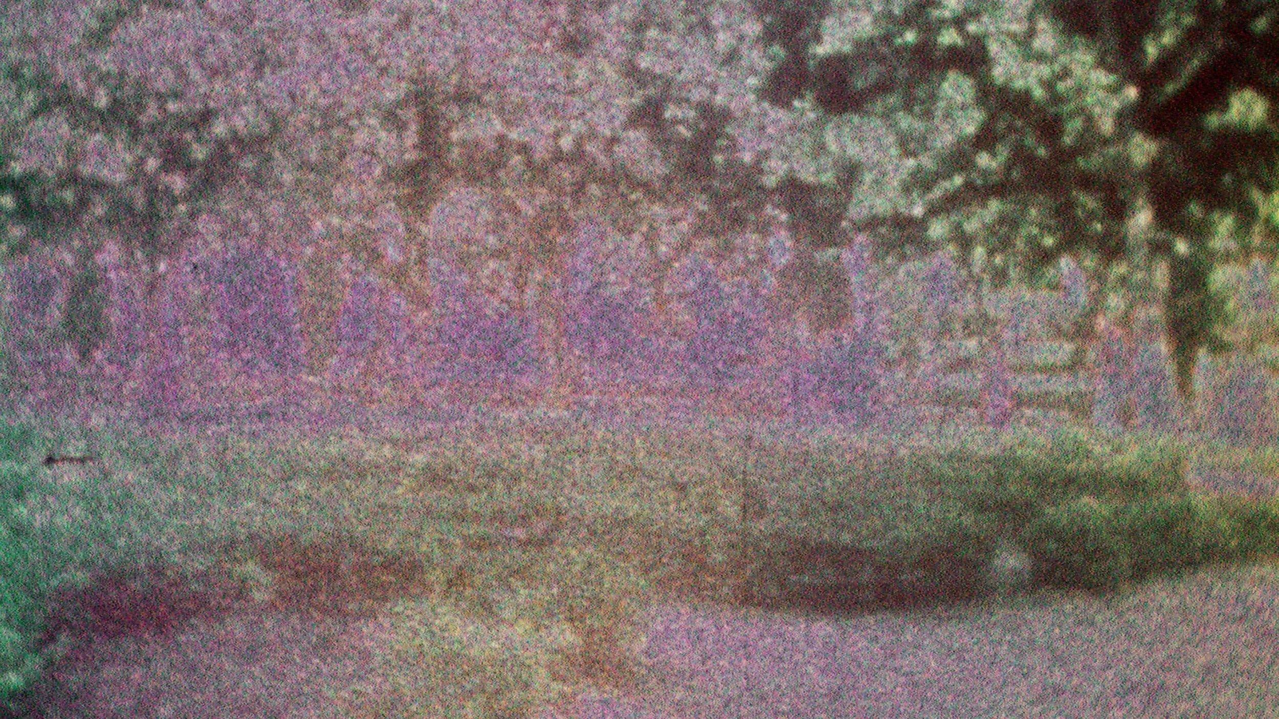 Catherine Sullivan, Triangle of need,  2008, «SVEMA TSO-50A 8MM #2», two C-Print, 2, 33,9 x 60 inches / 86,12 x 152,40 cm