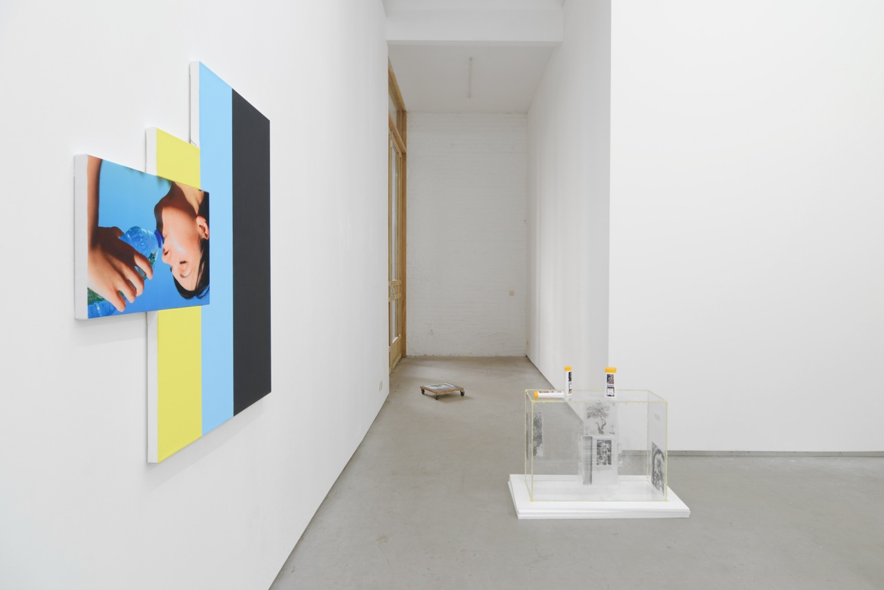 … / FOREVER YOUNG, Julia Wachtel, Uri Aran, Bitsy Knox, group show at Catherine Bastide gallery, Brussels, 2014, exhibition view