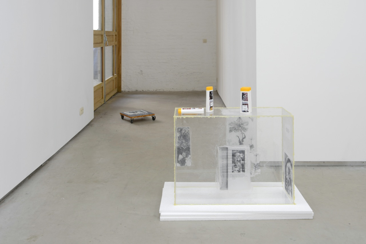 … / FOREVER YOUNG, Bitsy Knox, group show at Catherine Bastide gallery, Brussels, 2014, exhibition view
