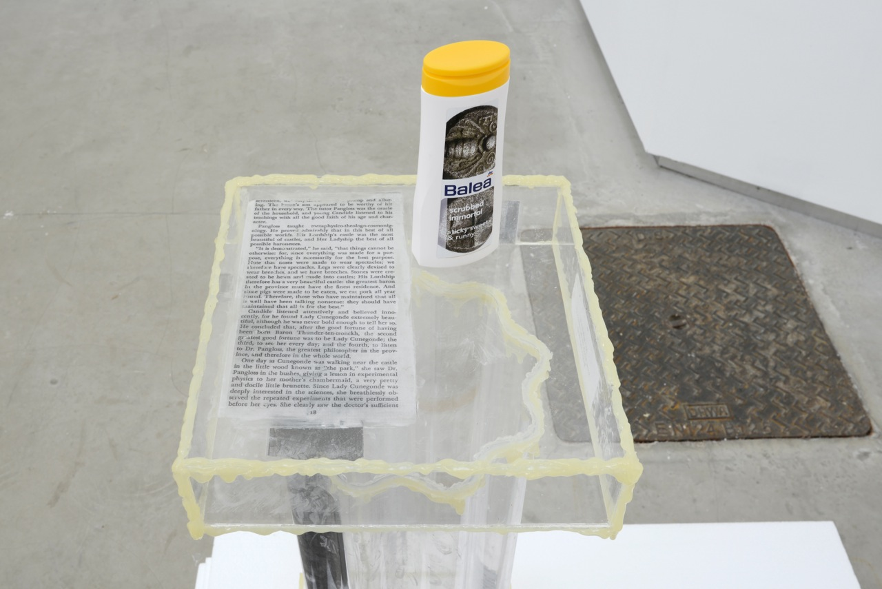 Bitsy Knox,  Constantly Activated Gyre of the Undead , 2014, plexiglass, glue, cust David Caille, L.O.V.E., 2014 (detail)