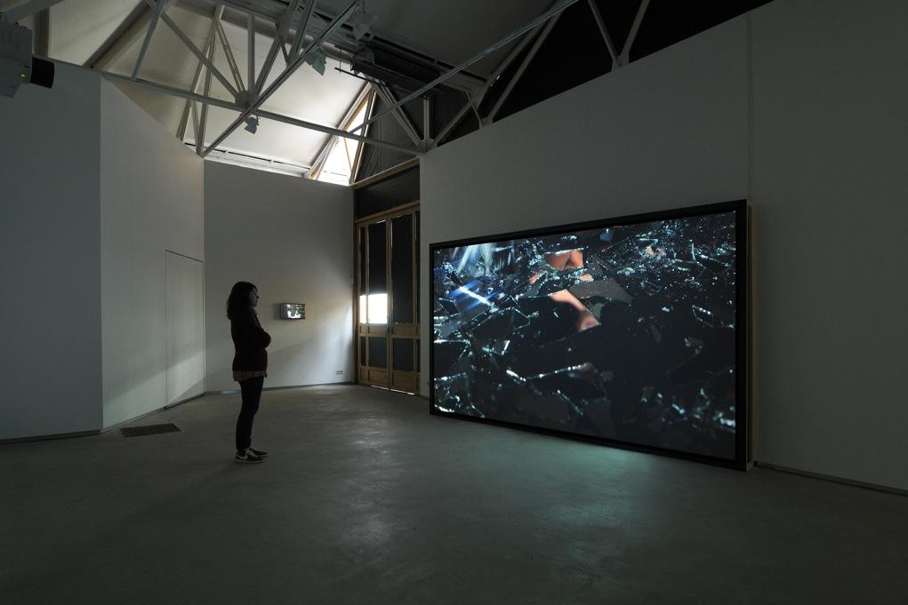 Sebastian Diaz Morales,  Ficcionario,  Catherine Bastide gallery, Brussels, 2013, exhibition view   Insight,  2012, 1-channel HD video, 11'30 min