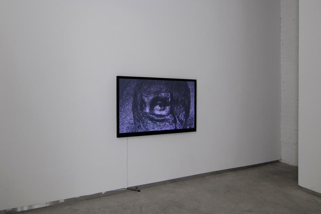 Sebastian Diaz Morales,  Ficcionario,  Catherine Bastide gallery, Brussels, 2013, exhibition view