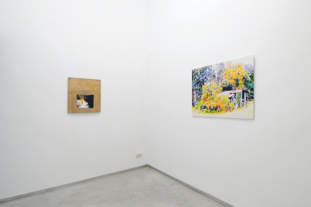 Ed Johnson, Catherine Bastide project room, Brussels, 2012, exhibition view