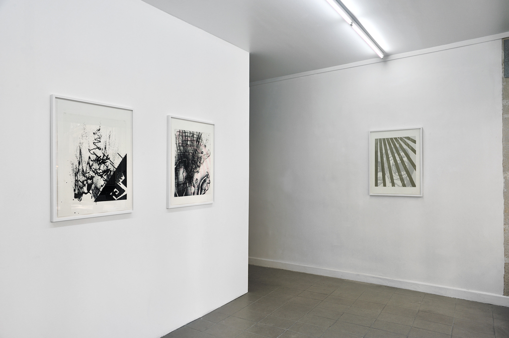 Charline Von Heyl at 8 rue Saint-Bon, Catherine Bastide, Paris, 2010