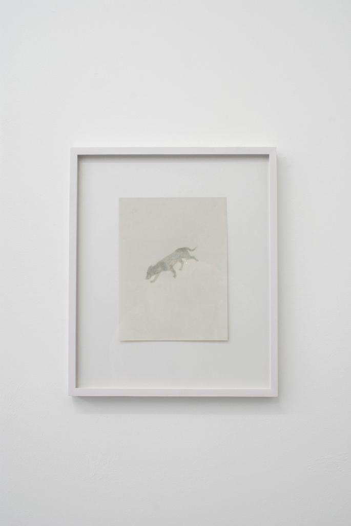 Ola Rindal, Guard dog II , 2009, Inkjet print, 25,5 x 19,2 cm – 44,5 x 37,2 cm