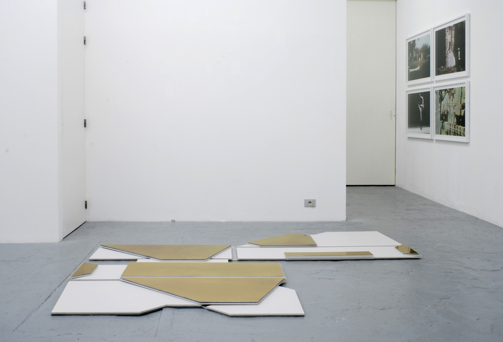 Group show with Dépendance, Catherine Sullivan, Guyton\Walker, Nariy Baghramian, Gedi Sibony, Christopher Williams, Cosima Von Bonin, Cerith Wyn Evans, Josef Strau, Brussels, exhibition view, 2008