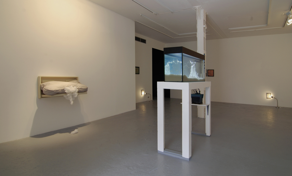 Pope.L , Biting Through Innocence,  Catherine Bastide gallery, Brussels, 2008, exhibition view