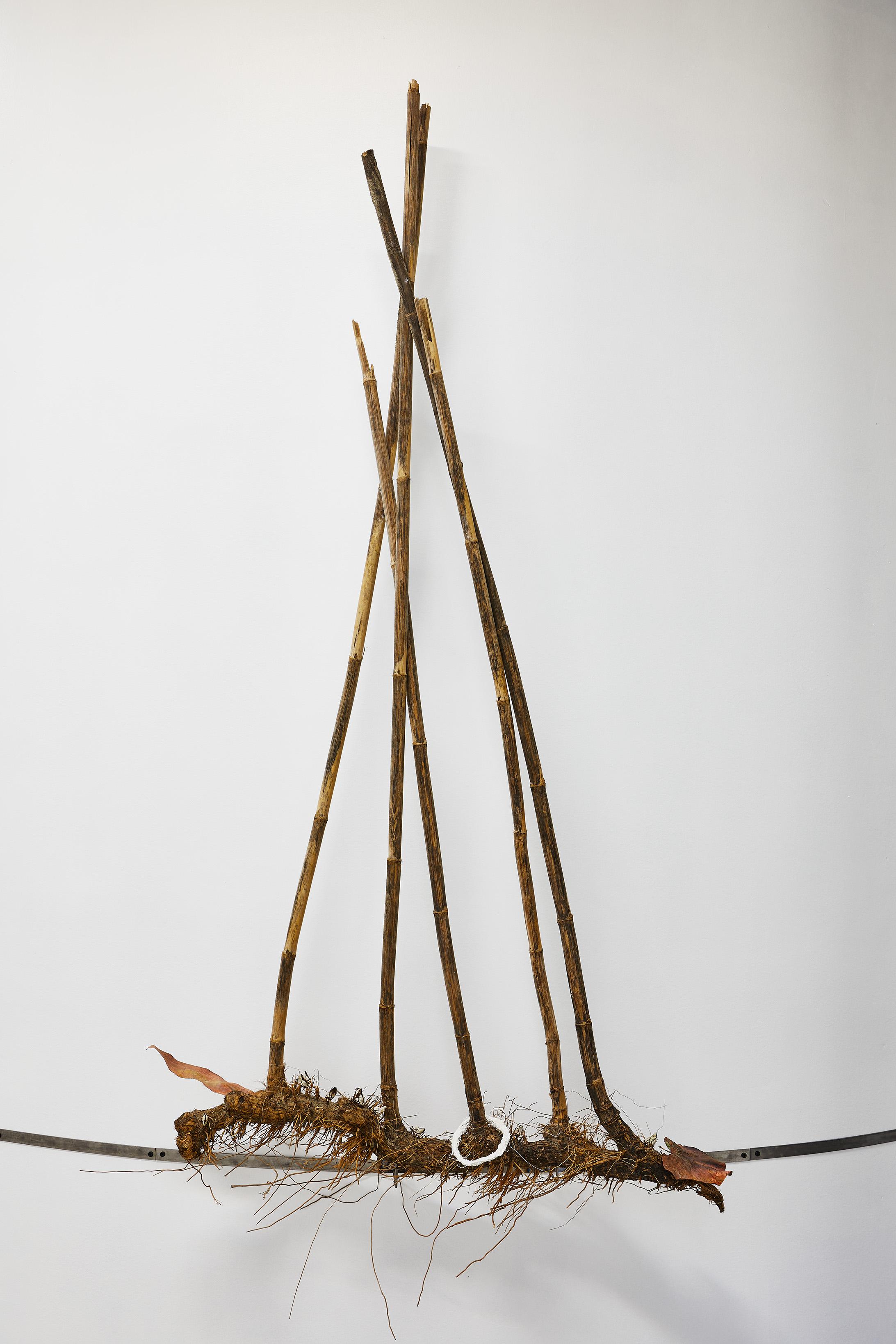 Piraterie,  2019. Bambou, feuille, plâtre, pousse pieds,cuivre, acier