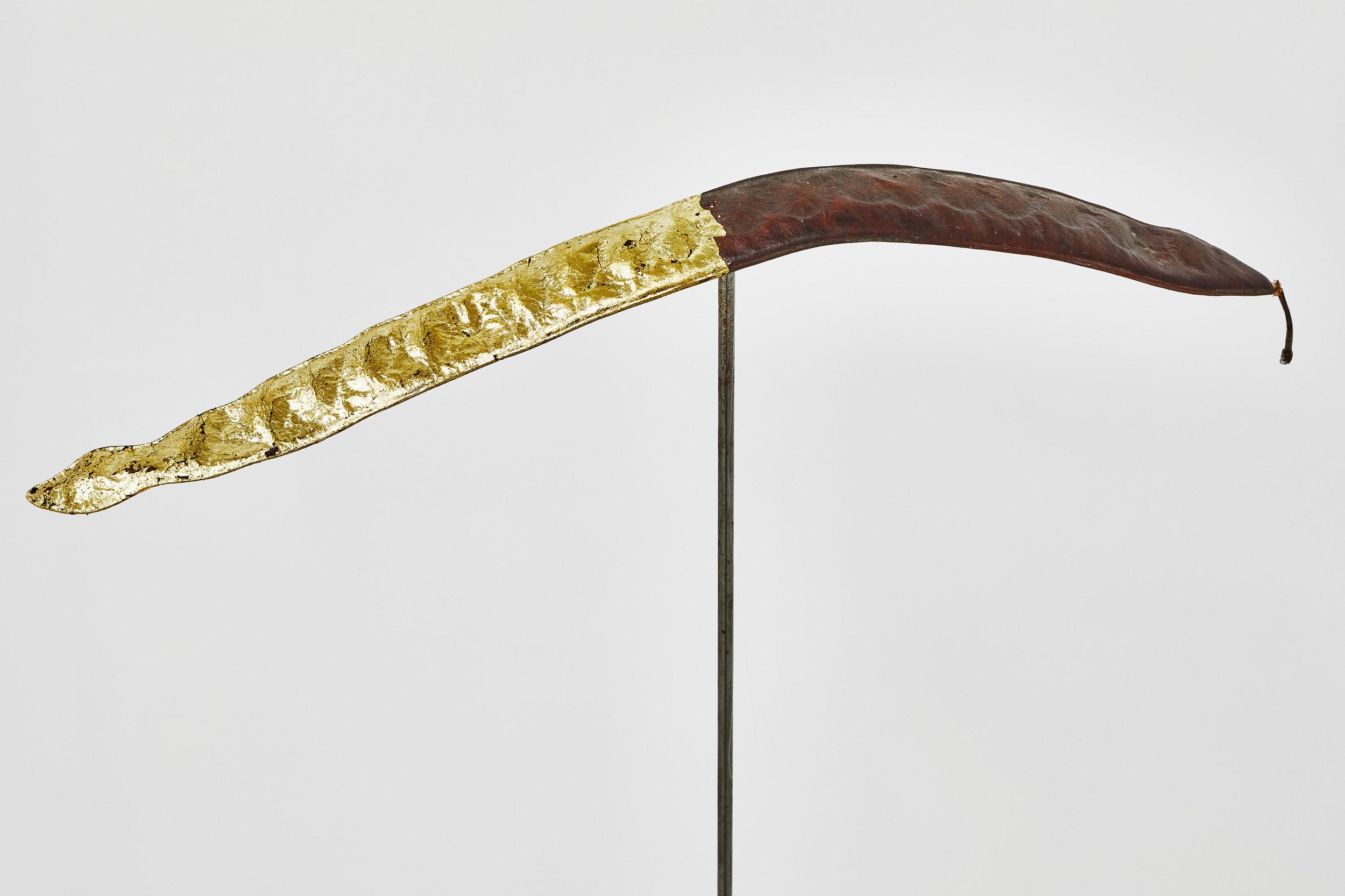 Caroube,  2019, detail view. Graine de caroubier, acier, zinc