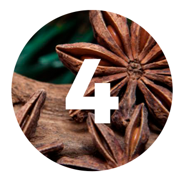 STAR ANISE  - Originating in China, this ingredient was incorporated to our recipe to balance the bitterness of our first botanicals to the hidden sweetness to be unveiled.