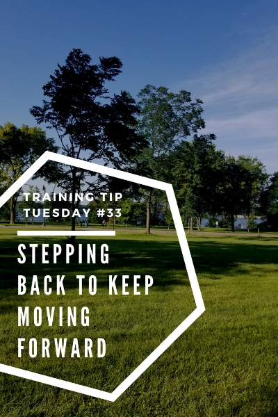 Training Tips Tuesday #33_ Stepping Back to Keep Moving Forward Pinterest.jpg