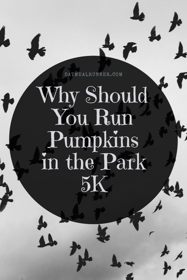 Why Should You Run Pumpkins in the Park 5K Pinterest.png