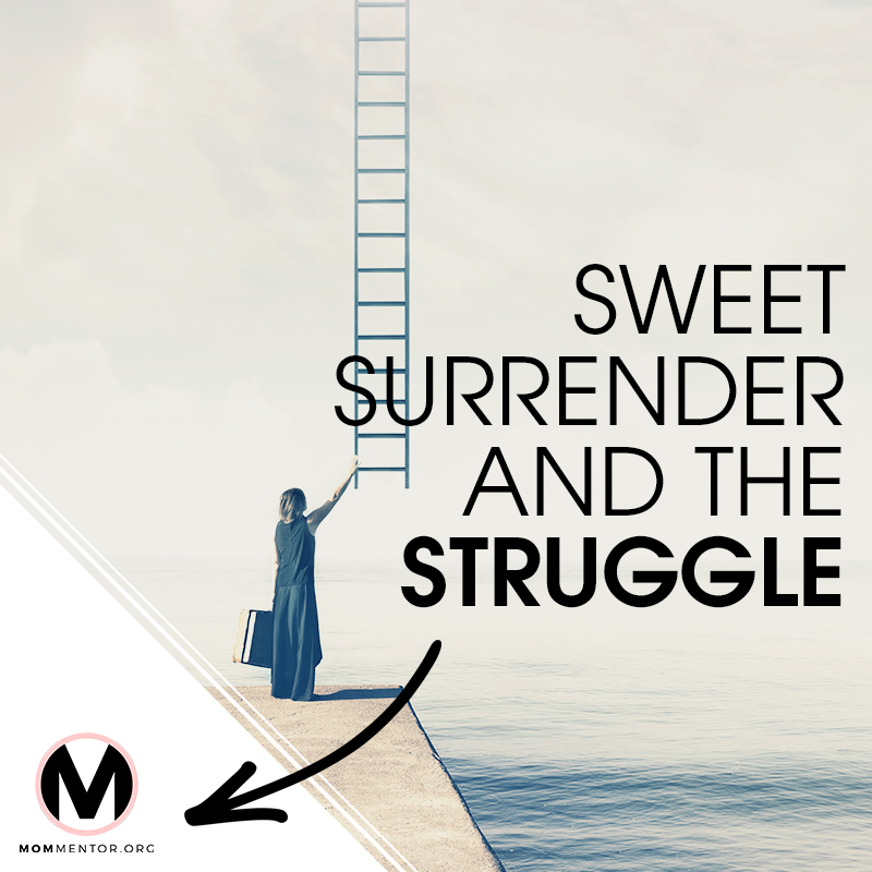 Sweet Surrender and the Struggle Cover Page Image 800x800 PINTEREST.jpg