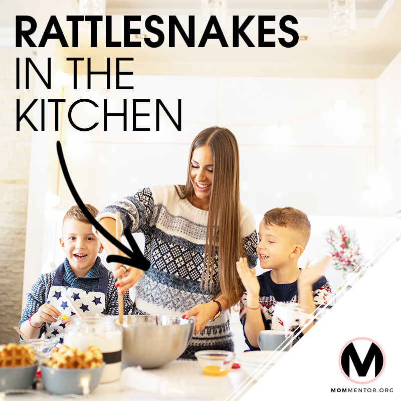 Rattlesnakes in the Kitchen Cover Page Image 800x800 PINTEREST.jpg