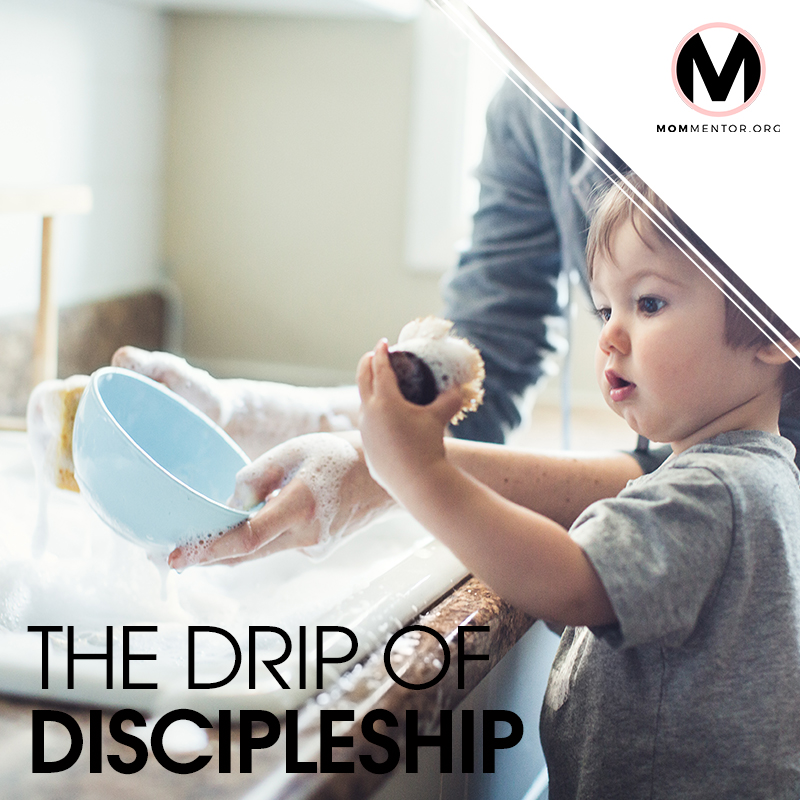 The Drip of Discipleship Cover Page Image 800x800 PINTEREST.jpg