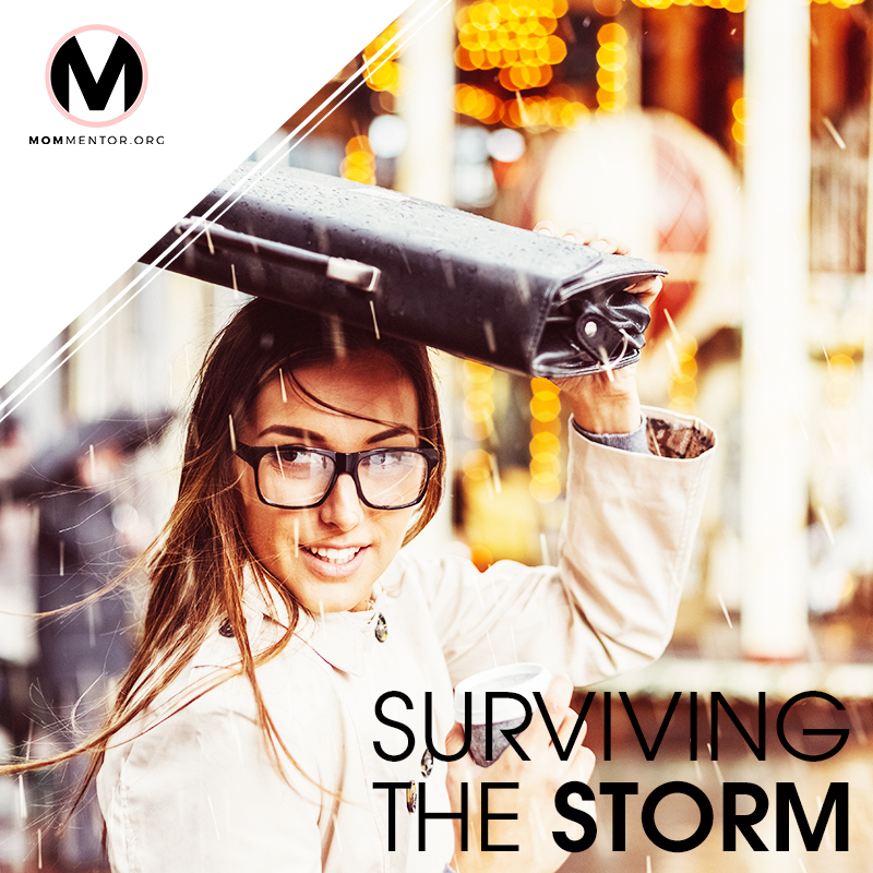 Surviving the Storm Cover Page Image 800x800 PINTEREST.jpg