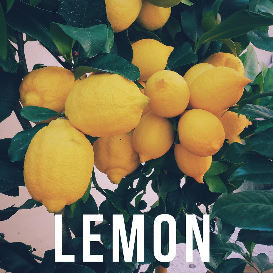 lemon-essential-oil.png