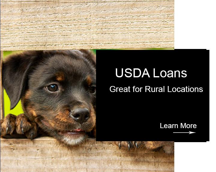 HUB Squares -2 rural USDA loans.png