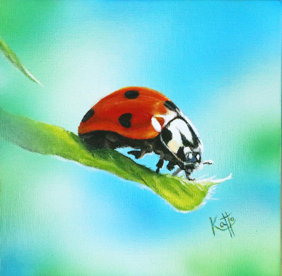 """Lovebug"""
