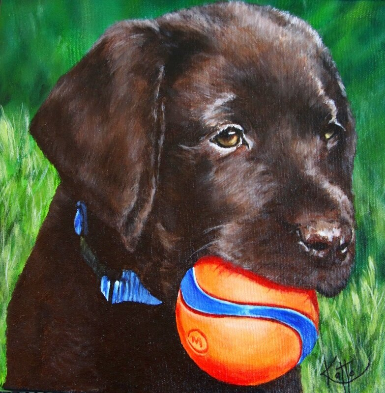 """""""Fred (the brown Lab pup)"""""""