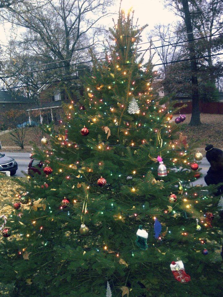 f0346-christmas-tree.jpg