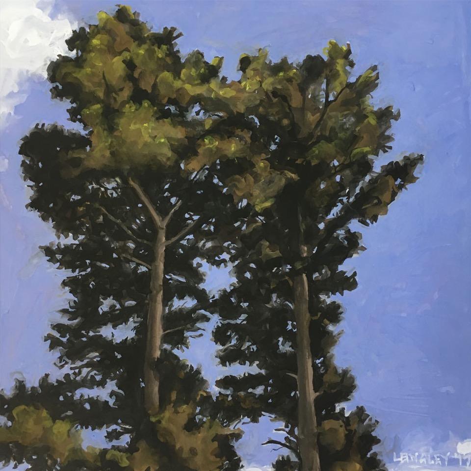 Hydo-Majestic-trees.jpeg