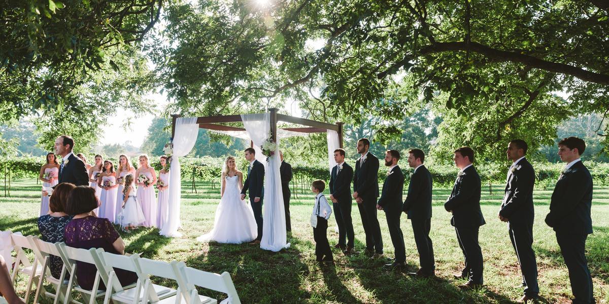 Dennis-Vineyards_-A-Place-in-The-Vineyard-wedding-Albemarle-NC-126835.1469816139.jpg