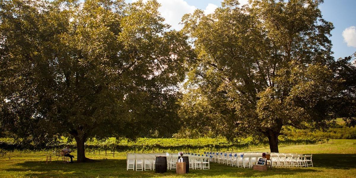 Dennis-Vineyards-A-Place-in-The-Vineyard-Wedding-Albemarle-NC-1.1469831440.jpg