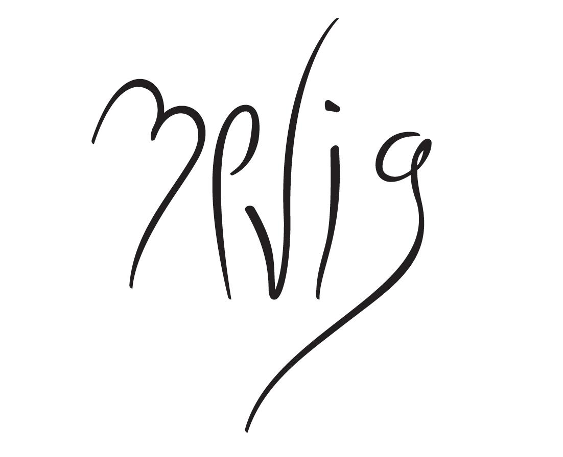 ZeviG-Signature.png